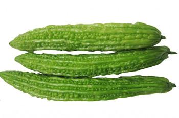 万博官网手机版网页版登录苦瓜:冬种瓜菜主要作物之一