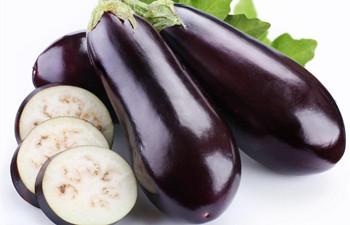 万博官网手机版网页版登录茄子:万博官网手机版网页版登录市冬种瓜菜主要作物之一