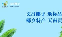 南海网文昌椰子品牌专题报道
