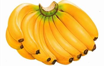 乐东香蕉:风味浓、口感好、品质优,营养价值高