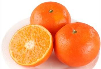 乐东沃柑:肉质脆嫩、汁多化渣,受到市场欢迎