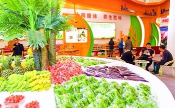 百款定安特色优质农副产品吸引市民游客