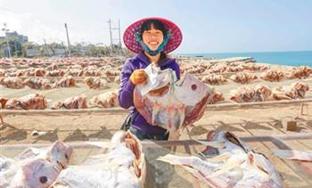儋州红鱼生产销售旺季省内外客户络绎不绝