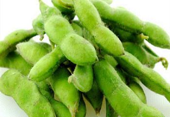 乐东毛豆:产业已经初具规模